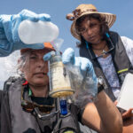 "Shaama Sandooyea (Greenpeace) : ""l'économie bleue est un mythe"""