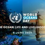 Des engagements politiques lors de la journée mondiale des océans