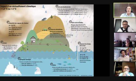 Économie carbone : les opportunités pour l'entreprise