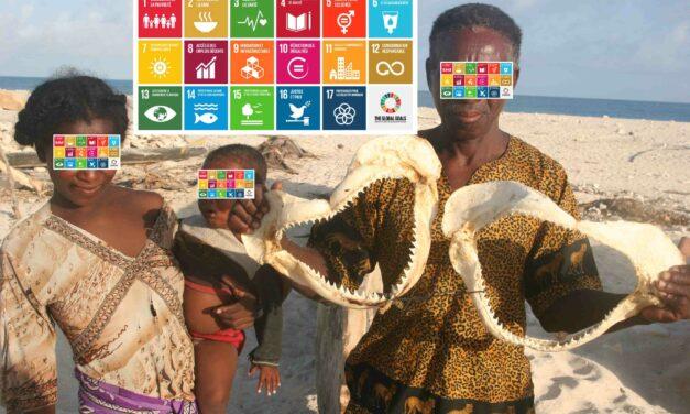 Un agenda 2030 trop ambitieux pour la Grande Ile ?