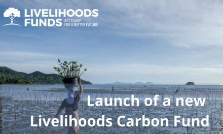 Livelihoods : 150 millions € pour compenser 30 millions de tonnes de CO2