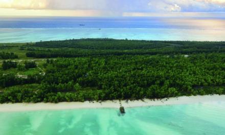 Juan de Nova : une île éparse productrice de guano